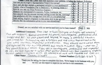 thumbnail of a scan for Tammy Schuft review